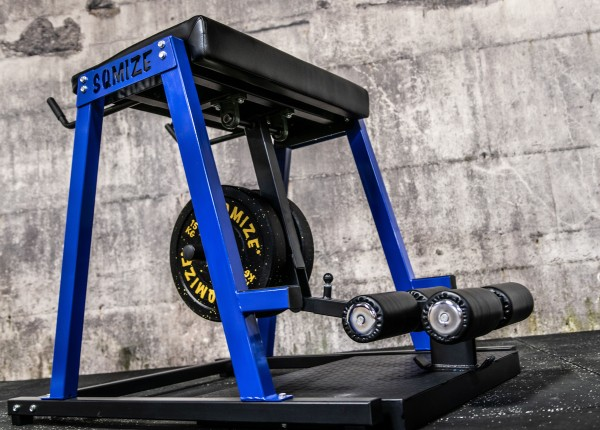 Reverse Hyper SQMIZE® RH1200 FFS Gym Series